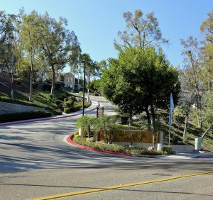 Front entrance drive near The Terraces sign with trees going uphill, and sidewalks