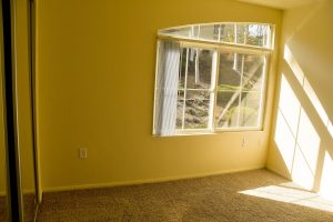 Sunny carpeted bedroom with large window and angled half arch window directly above main window
