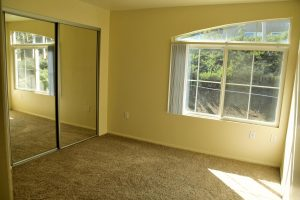 Sunny carpeted bedroom with large window and angled half arch window directly above main window with mirrored door closet