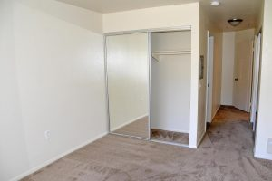 carpeted bedroom facing closet with mirrored door